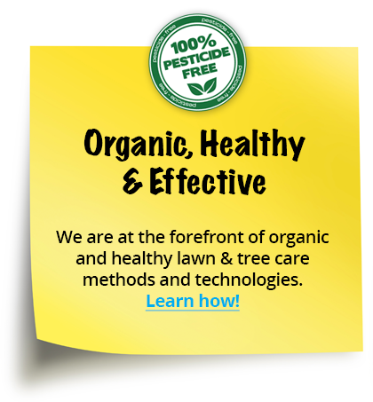 Organic, Healthy & Effective - We are at the forefront of organic and healthy lawn & tree care methods and technologies.