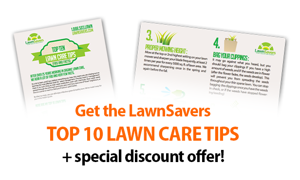 Get the LawnSavers TOP 10 LAWN CARE TIPS + special discount offer!
