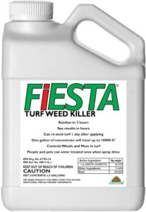 fiesta weed control lawnsavers lawn care service