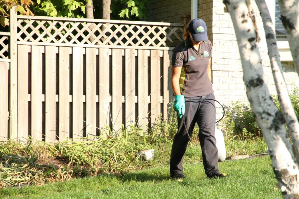 aurora lawn care lawnsavers weed control
