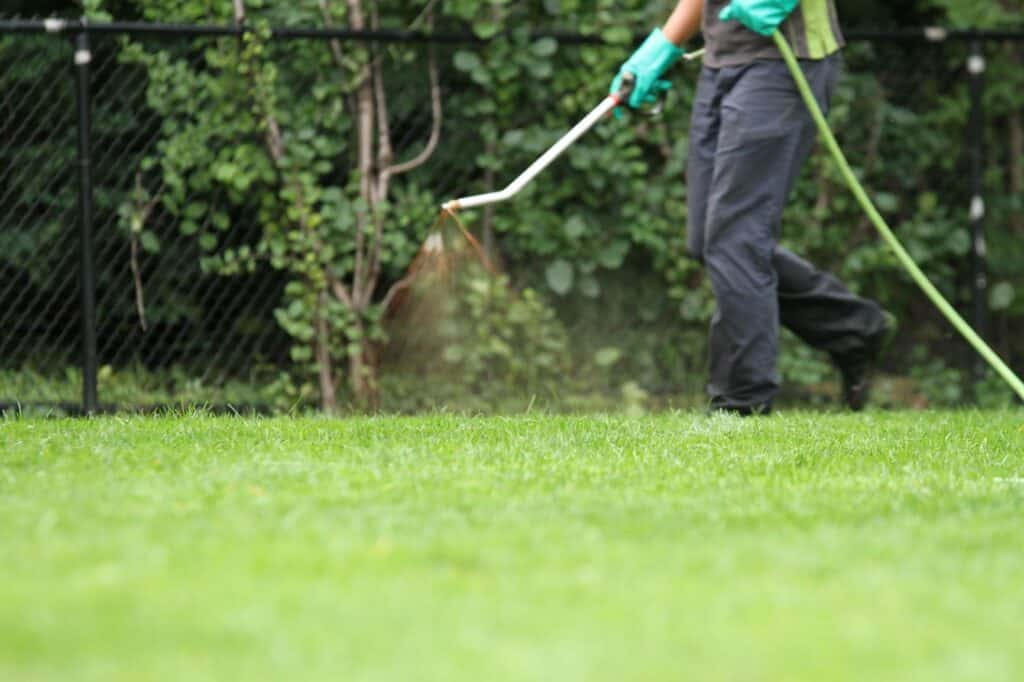 lawnsavers organic lawncare services toronto
