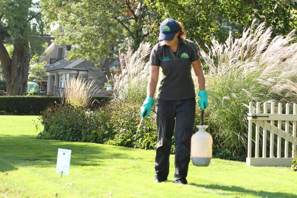 markham lawn care lawnsavers weed control