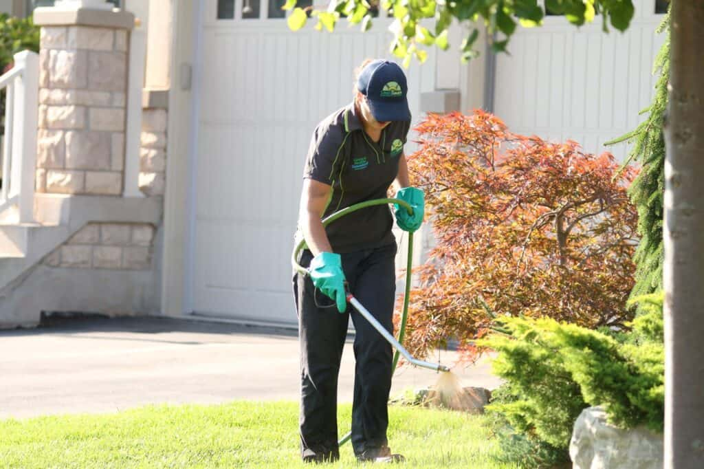 newmarket lawn care lawnsavers weed control