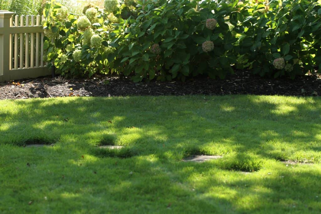 pickering lawn care lawnsavers weed control