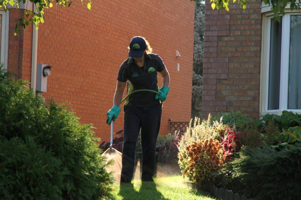 richmond hill lawn care lawnsavers weed control