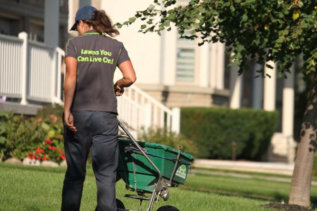 vaughan lawn care lawnsavers weed control