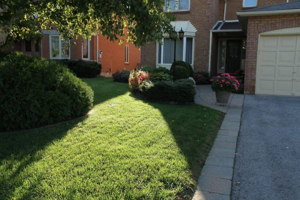 beautiful lawn2 tips for good lawn care lawnsavers