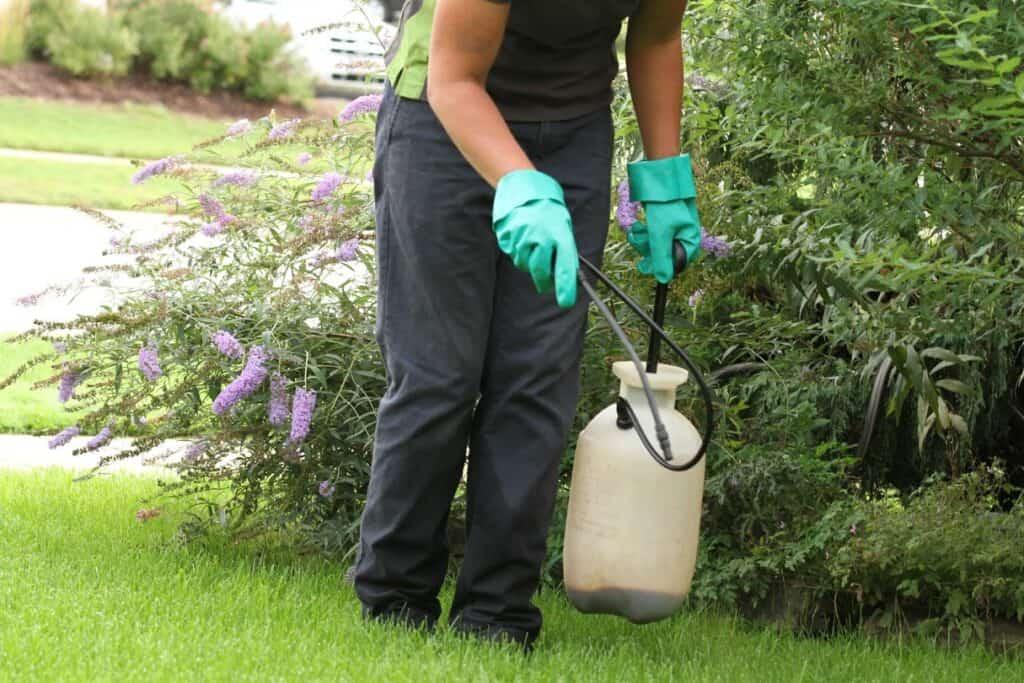 poison ivy spray lawnsavers