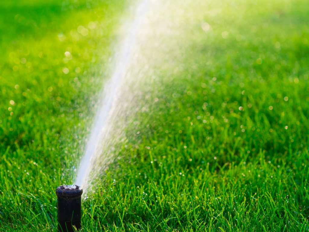 watering your lawn tips good lawn care lawnsavers