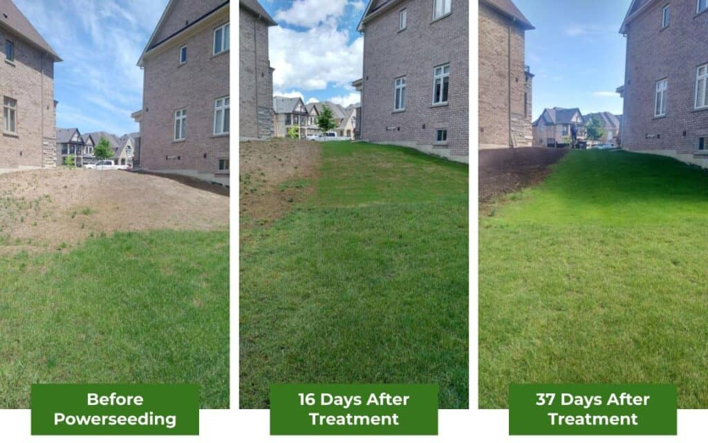 powerseeding before and after